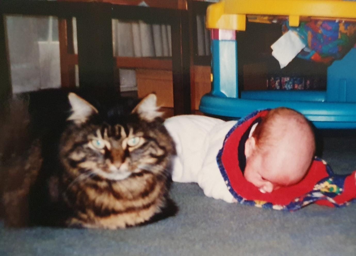 Oscar The Baron On Duty With A Face Planted Xavier Fleming 1997