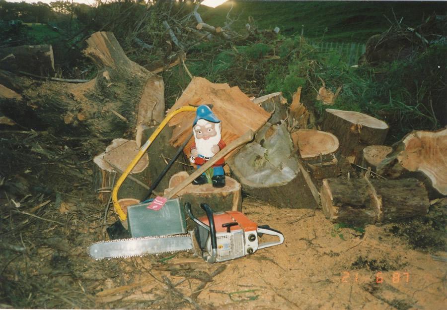 Merv The Lumberjack